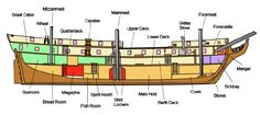 Longitudinal section of H.M.S. Surprise