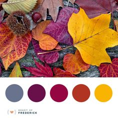 I bet you love fall leaves as much as we do. So many amazing colors- from yellow and reds to royal purples and deep browns. Leaves are the perfect jumping off point for inspiration of all kinds.