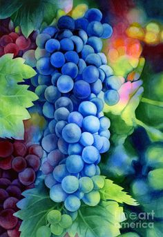 Sunlit Grapes Painting by Hailey E Herrera