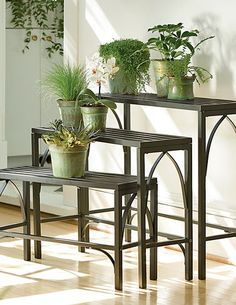 brushed copper plant stands | wanted | Pinterest | Plants ...