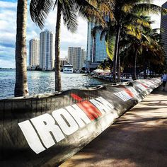 Race Report: Ironman 70.3 Miami | Four Season Fit Race Bibs, Athletic Events, Iron Man, Miami, Racing, Seasons, Fit, Running, Iron Men