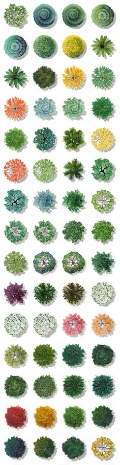 Visual result of photoshop plant plans # architektonischepräsentati . - Visual result about photoshop plant plans # Architektonischepräsentatio& who - Landscape Architecture Drawing, Landscape Sketch, Landscape Design Plans, Landscape Drawings, Architecture Plan, Garden Architecture, Landscaping Design, Landscaping Trees, Landscape Architects