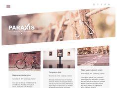 Paraxis Lite Popular — Free WordPress Themes