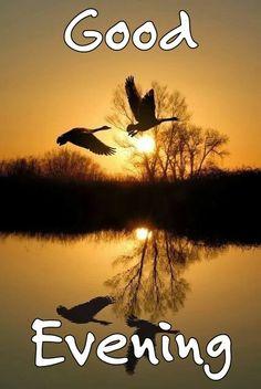 A beautiful evening