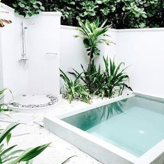 Swimming Pool Design: White Small Backyard Pool Decor - 18 Gorgeous Plunge Pools For Tiny Backyard Best Swimming, Swimming Pools Backyard, Swimming Pool Designs, Garden Pool, Mini Swimming Pool, Lap Pools, Indoor Pools, Pools For Small Yards, Backyard Ideas For Small Yards