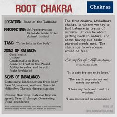 The Root Chakra is the first of  seven levels of consciousness in this philosophical model for balancing your energy.  (Sources: Eastern Body, Western Mind and Chakras for Beginners... see GroundingYoga.com for more)