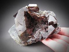 Axinite Crystals, Polar Urals, Russia