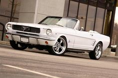 1966 Mustang in Wimbledon White