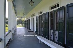 Learn About Sugar Cane at St. Joseph Plantation in Vacherie, Louisiana | mybigfathappylife.com