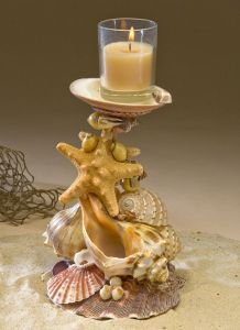 Love this!! Seashell Gallery   Smith Cove Seashells & Crafts