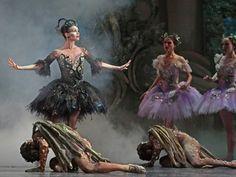 The Houston Ballet