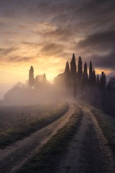 """ponderation: """" Tuscany Ghosts by Luca Pelizzaro """""""