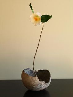 """Chabana (literally """"tea flower"""") is the simple style of flower arrangement used in tea ceremony. Chabana has its roots in ikebana, an older style of Japanese flower arranging, which itself has roots in Shinto and Buddhism. Ikebana Arrangements, Ikebana Flower Arrangement, Modern Flower Arrangements, Flower Vases, Flower Art, Cactus Flower, Deco Floral, Arte Floral, Floral Design"""
