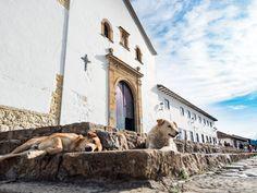 La place de Villa de Leyva, monument national de la Colombie #Colombie #Voyage #VillaDeLeyva #Inspiration #Monument #Eglise #Andes #Place #Colombia #Village #Voyager #Patrimoine