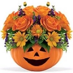 Great No Cost Halloween! Style Among the most wonderful and sophisticated varieties of plants, we cautiously selected the matching Halloween Flower Arrangements, Pumpkin Floral Arrangements, Halloween Flowers, Fall Arrangements, Halloween Pumpkins, Fall Halloween, Halloween Crafts, Artificial Floral Arrangements, Halloween 2020