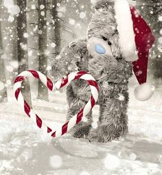 Tatty Teddy pictures Buying A Luxury Watch Seven Things You Should Consider Before Buying A Watch Pu Tatty Teddy, 3d Christmas, Christmas Drawing, Beautiful Christmas, Teddy Beer, Hades Disney, Nose Drawing, Teddy Bear Pictures, Blue Nose Friends
