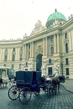 A Fiaker at Hofburg Palace by Gilderic Photography, via Flickr