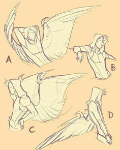 Drawing Reference|| Human with wings/How to draw wings