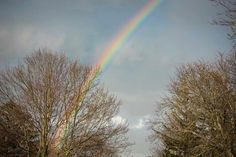 96/365 Rainbow! Yes we had a FULL rainbow from one side to the other tonight after a wicked storm.  This makes me so happy! :D The world should have more of these don't you think!? #365 #365Project #ThreeSixtyFive #OnePhotoEveryday #PersonalProject  #lilacblossomphotography #nikon #nikond810 #2017  #candidchildhood #everydaystorytelling #letthekids #magical  #2017Storytellerschallenge #three_sixty_five2017 #Inthe365 #clickinmoms #inthenow #snaplovegrow #pocket_sweetness #lifewellcaptured…
