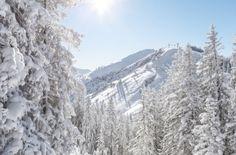 Copyright: Saalbach-Hinterglemm Salzburg, Parks, The Province, Austria, Skiing, Snow, Wallpaper, Outdoor, Ski Resorts