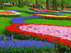 in Holand