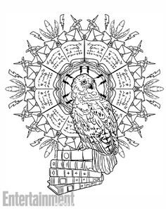 See A Sneak Peek Inside Harry Potter Magical Creatures Coloring Book Owl PagesFree