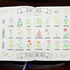 Nice reminder of what to plant in the spring! Save the bees!  #bulletjournal #bulletjournaling #bujojunkies #bujojunkie #bujo #bulletjournalspread #bulletjournalsetup #infographic #bujospread #doodle #doodles #doodling #bujojournaljunkies #bulletjournaljunkie #savethebees #buzzbuzz #buzz