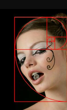 Ten Ways to Take Better Photos Without Spending More Money: The Golden Spiral Nautilus spiral and Ediely Sequence Photography, Photography Basics, Photography Tutorials, Photo Maker, Fibonacci Spiral, In Natura, Rule Of Thirds, Photo Composition, Golden Ratio