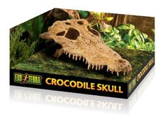 Exo Terra Crocodile Skull Terrarium D  The Exo Terra Skull hides are very practical and include an amazing accent to any type of terrarium, desert, rainforest or aquatic. These hides offer multiple entrances for simple gain access to and include an additional dimension to the terrarium setup.