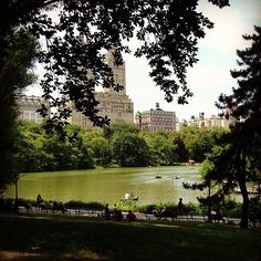 The Ultimate Dating Bucket List  Picnic in New York City's Central Park