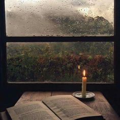 Cozy fall with rain and a good book to read by candlelight with a view to stare at in between chapters ♡ ~ Ty Michelle Faust Goethe, Haunted Tree, Jolie Photo, Rainy Days, Rainy Mood, Autumn Leaves, Autumn Rain, Autumn Cozy, Happy Autumn