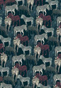 Zebra - Wallpaper