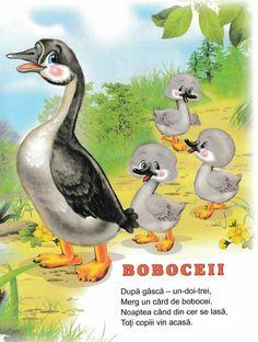 Preschool Activities, Kids And Parenting, Education, Roman, Baby, Floral, Preschool Learning Activities, Flowers, Baby Humor