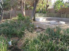 African Boma Garden - Create A Landscape