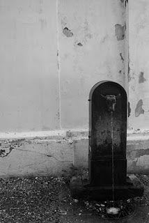 Il Toret, una delle caratteristiche fontanelle di #Torino