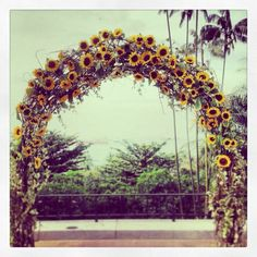 Sunflower Wedding Arch - Bing Images