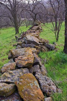 Dry stacked stone fence, mom made these too, when I was young I used to go with her to these remote places in the woods where she would collect rocks for her rock walls