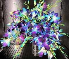 orchid bridal bouquet of purple bombay dendrobium orchids dyed blue ...