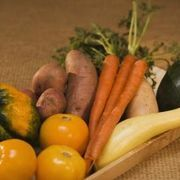 Nebraska Garden Calendar and When to Plant Vegetables