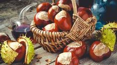 Natural Remedies for Varicose Veins - Everyday Remedy Varicose Vein Remedy, Varicose Veins, Natural Medicine, Herbal Medicine, Natural Cures, Natural Healing, Chestnut Horse, Herbal Remedies, Herbalism