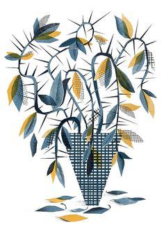 Illustration Daily - Karol Banach