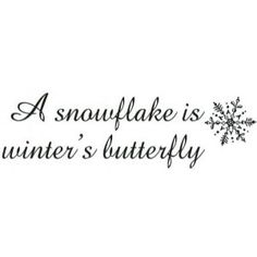 Bon Sarasota Stamps Mounted Rubber Stamp: Snowflakes Are Winteru0027s Butterfly