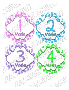 Monthly Onesie Stickers Cheetah Print Girl