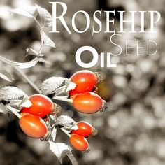 #Rosehip oil  is truly an amazing product for a healthy glowing skin. The more I read about it the more I fell in love with it. It is full of vitamins #antioxidants and essential fatty acids that are known to correct dark spots and hydrate dry itchy skin all while reducing scars and fine lines.  Benefits of ROSEHIP SEED OIL :  Calms and hydrates dry and sensitive skin.  Protects skin cells from sun damage.  Helps repair and regenerate damaged skin tissue.  Skin brightening anti-ageing…