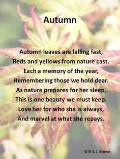 A poem at the joy and marvel of autumn.