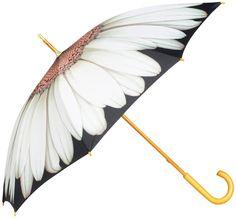 Harold Feinstein Daisy Umbrella