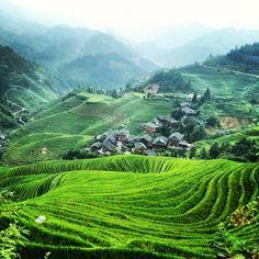 Longji Rice Terraces, Guangxi, China