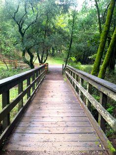 Caminando, siempre caminando, cruzando puentes.  Walking...always walking, going through bridges