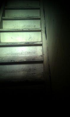 Kavaflar Merdiven..
