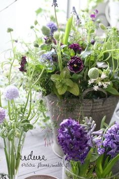 How to Plant Potted Flowers Outdoors in the Soil : Garden Space – Top Soop Green Flowers, Cut Flowers, Beautiful Flowers, Beautiful Flower Arrangements, Floral Arrangements, My Flower, Flower Pots, Bouquet Champetre, Pot Pourri